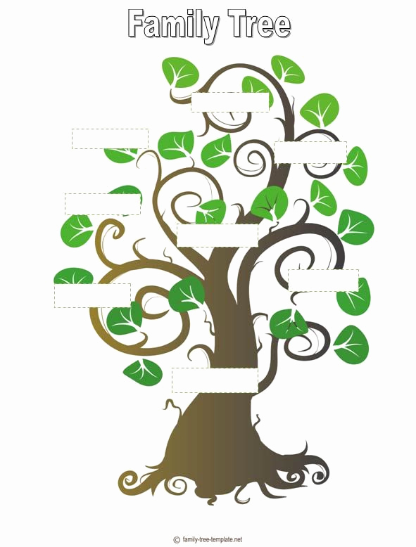 Blank Family Tree Template Inspirational Blank Family Tree Template for Kids