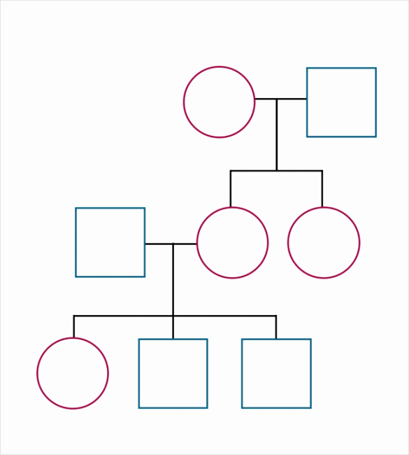 Blank Family Tree Template New Blank Family Tree Template 32 Free Word Pdf Documents