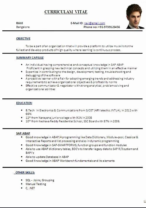 Curriculum Vitae Template Word Best Of Cv format In Word File Sample Template Ofbeautiful