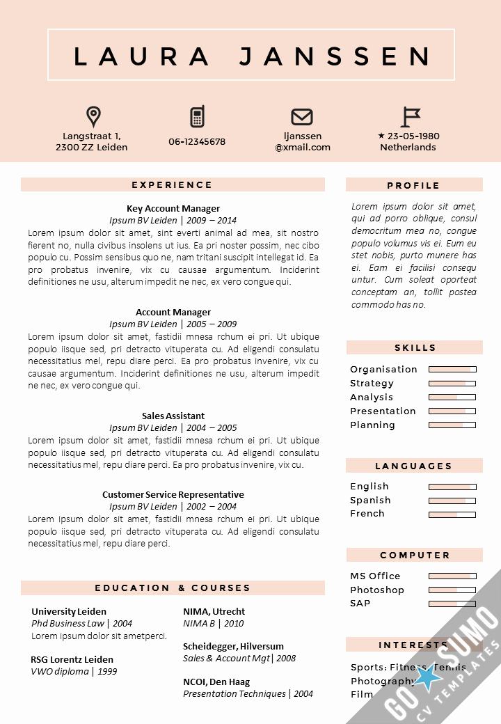 Curriculum Vitae Template Word Fresh where Can You Find A Cv Template