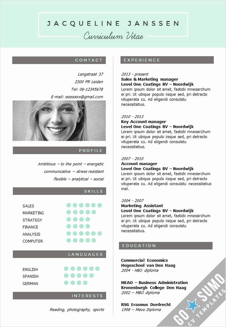 Curriculum Vitae Template Word Lovely 25 Best Ideas About Creative Cv Template On Pinterest