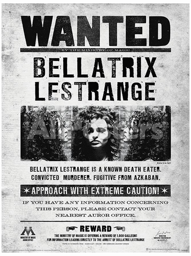 "Harry Potter Wanted Poster Best Of Harry Potter ""bellatrix Wanted"" Framed Print 30 X 40 Cm"