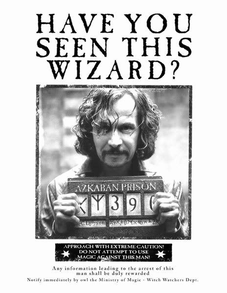 Harry Potter Wanted Poster Fresh 20 Life Lessons I Learned From Harry Potter