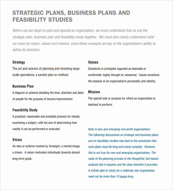 Non Profit Business Plan Elegant 22 Non Profit Business Plan Templates Pdf Doc