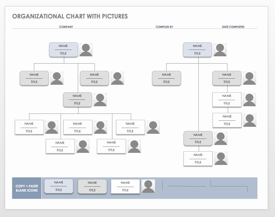 Organizational Chart Template Word Beautiful Interior Design Firm organizational Chart