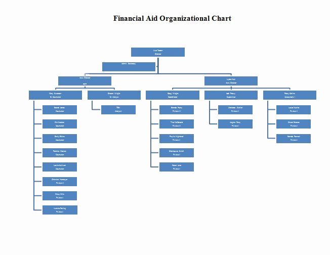 Organizational Chart Template Word Elegant 40 organizational Chart Templates Word Excel Powerpoint