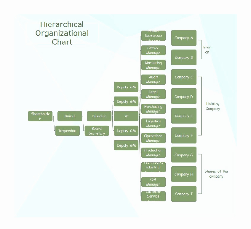 Organizational Chart Template Word Fresh 40 Free organizational Chart Templates Word Excel