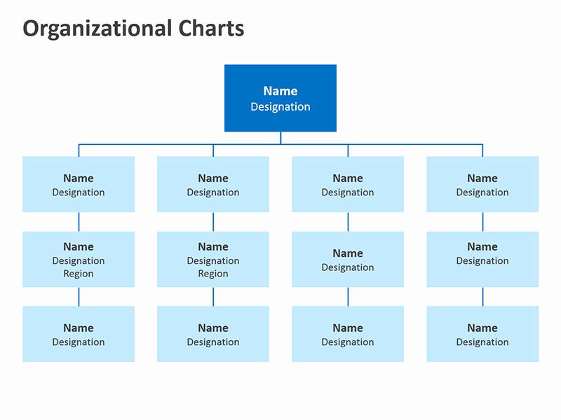 Organizational Chart Template Word Fresh organizational Chart Template Word Blank org Free Diagram