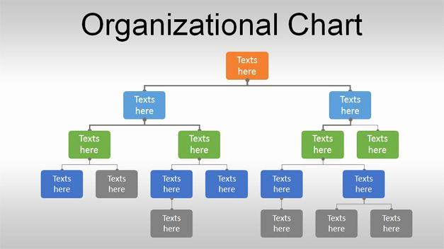 Organizational Chart Template Word Inspirational Free org Chart Powerpoint Template