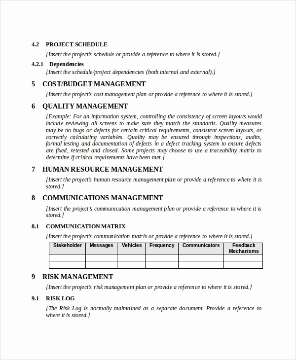 Project Management Plan Example Beautiful Project Plan Template 10 Free Word Pdf Document