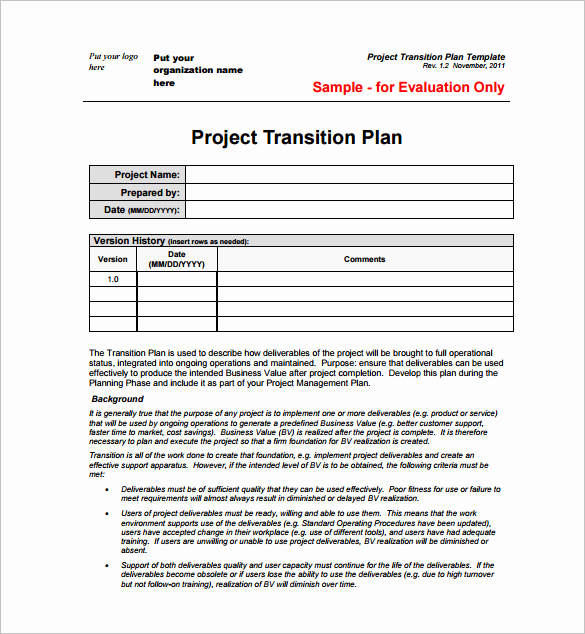 Project Management Plan Example Elegant 29 Project Plan Template Doc Excel Pdf