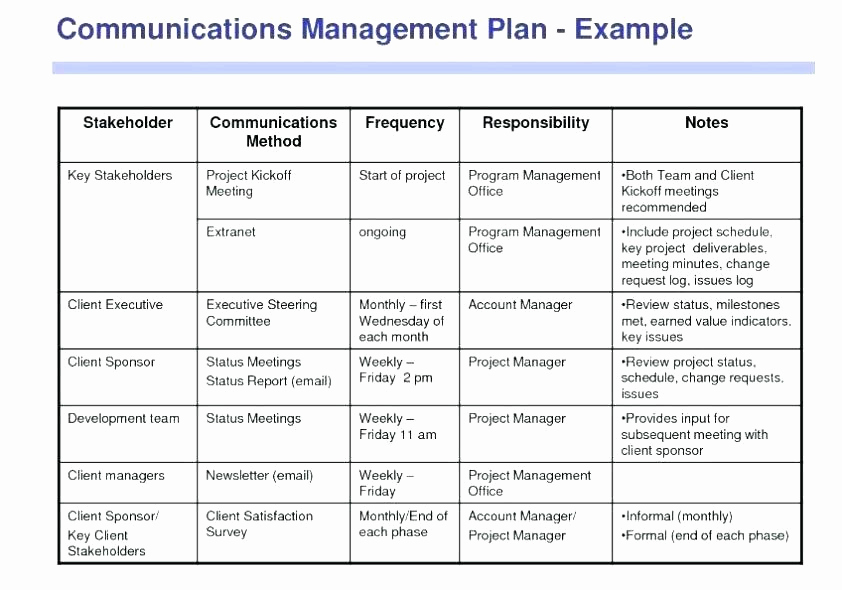 Project Management Plan Example Inspirational 15 Work Plan Template