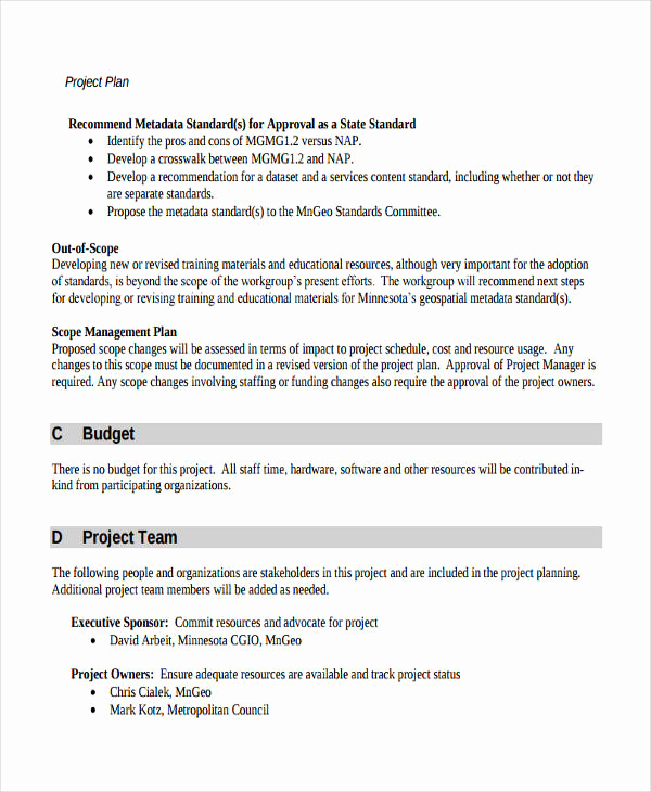 Project Management Plan Example Unique 57 Management Plan Examples Pdf Word Pages