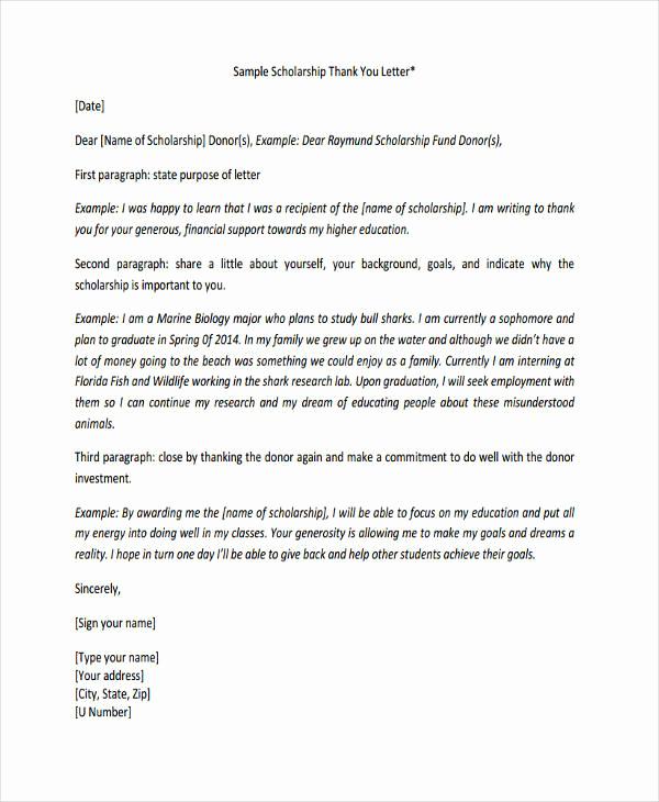 Scholarship Thank You Letter Examples Elegant 74 Thank You Letter Examples Doc Pdf