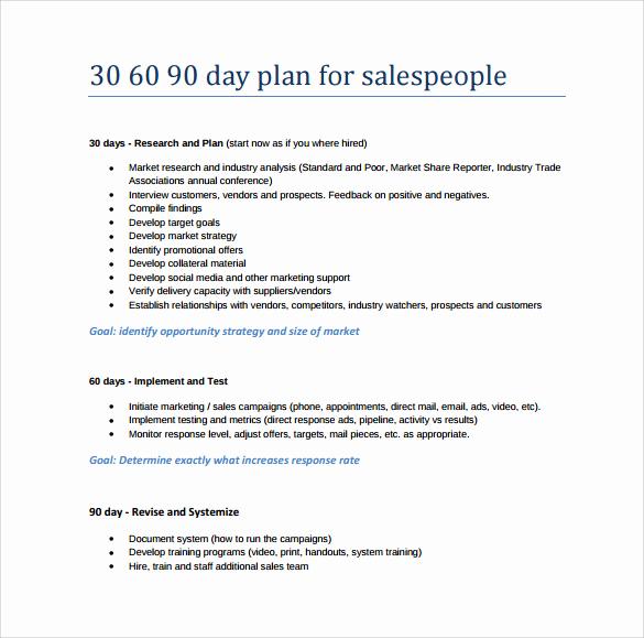 30 60 90 Plan Templates Luxury 20 30 60 90 Day Plan Samples Pdf Word