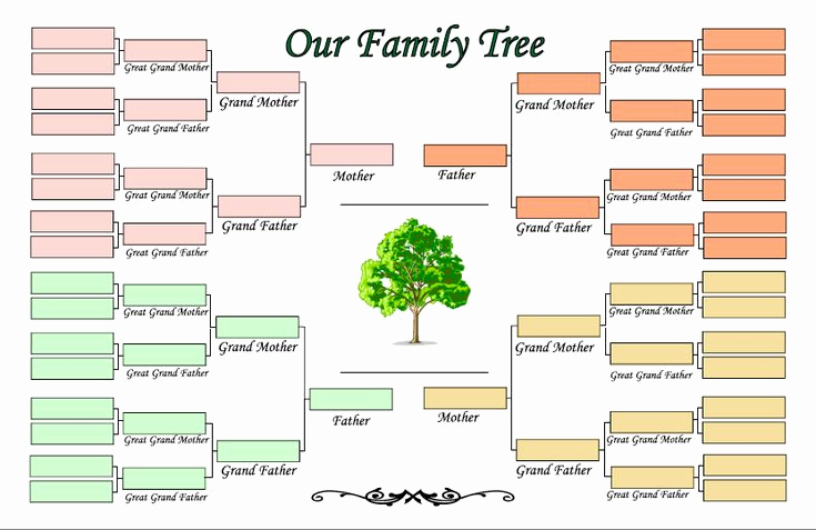 4 Generation Pedigree Chart Beautiful 4 Generation Family Tree Template Ldf1cblj
