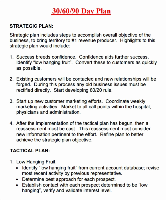 90 Day Plan Template Unique 14 Sample 30 60 90 Day Plan Templates Word Pdf