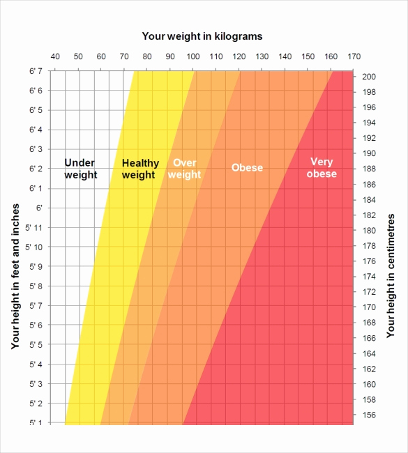 Age and Weight Chart Awesome Height Weight Chart Templates – 12 Free Excel Pdf