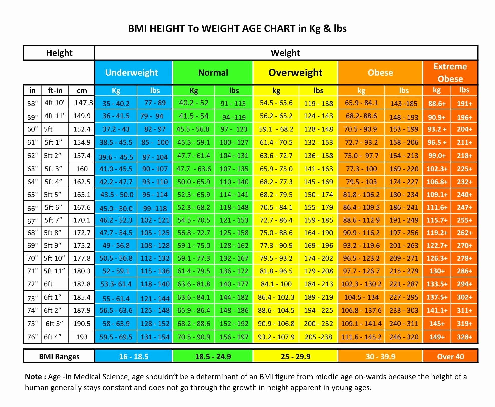 Age and Weight Chart Beautiful Bmi Height to Weight Age Chart for Male & Female