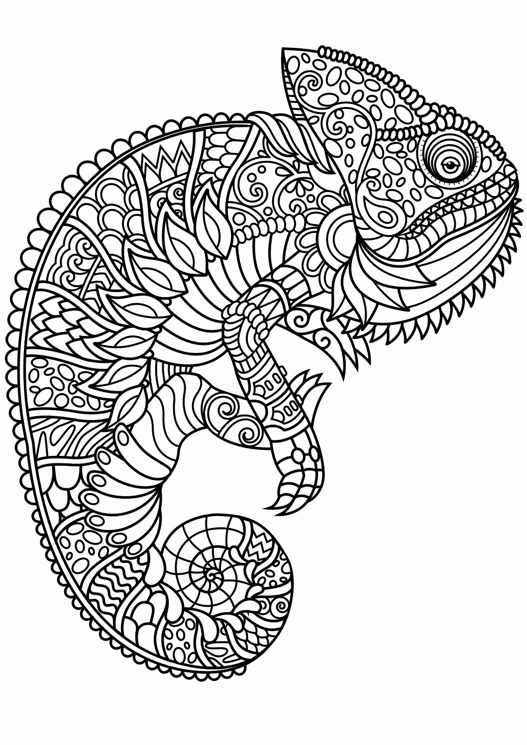 Animal Pictures to Color Awesome Animal Coloring Pages Pdf Coloring Animals