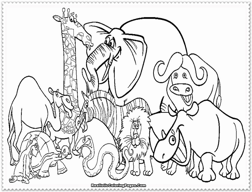 Animal Pictures to Color Lovely Zoo Animal Coloring Pages