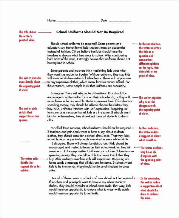 Argumentative Essay Sample Pdf Lovely Persuasive Essay Example 8 Samples In Word Pdf