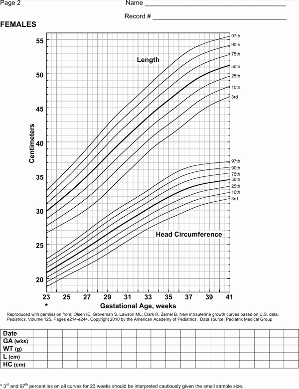 Baby Girl Growth Chart Awesome Download Baby Girl Weight Growth Chart Template for Free