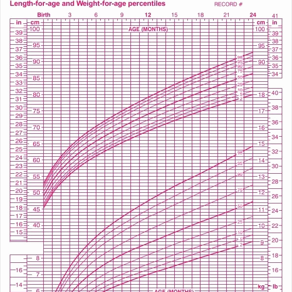 Baby Girl Growth Chart Luxury 7 Baby Girl Growth Chart Templates – Sample Example
