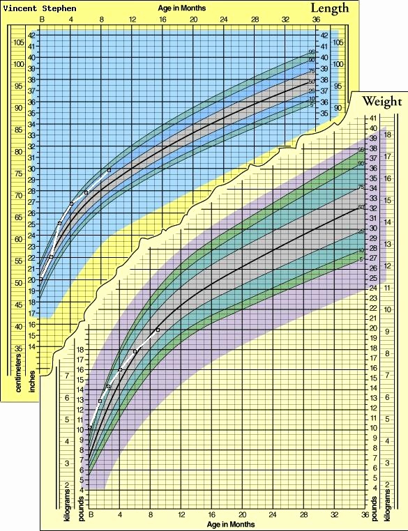 Baby Growth Chart Boys Beautiful the 25 Best Height Weight Chart Boys Ideas On Pinterest
