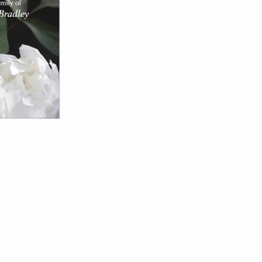 Bereavement Thank You Cards Awesome White Peony 1 Memorial Sympathy Thank You Card