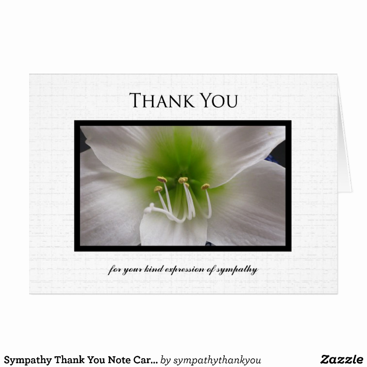 Bereavement Thank You Notes New Sympathy Thank You Note Card White Amaryllis