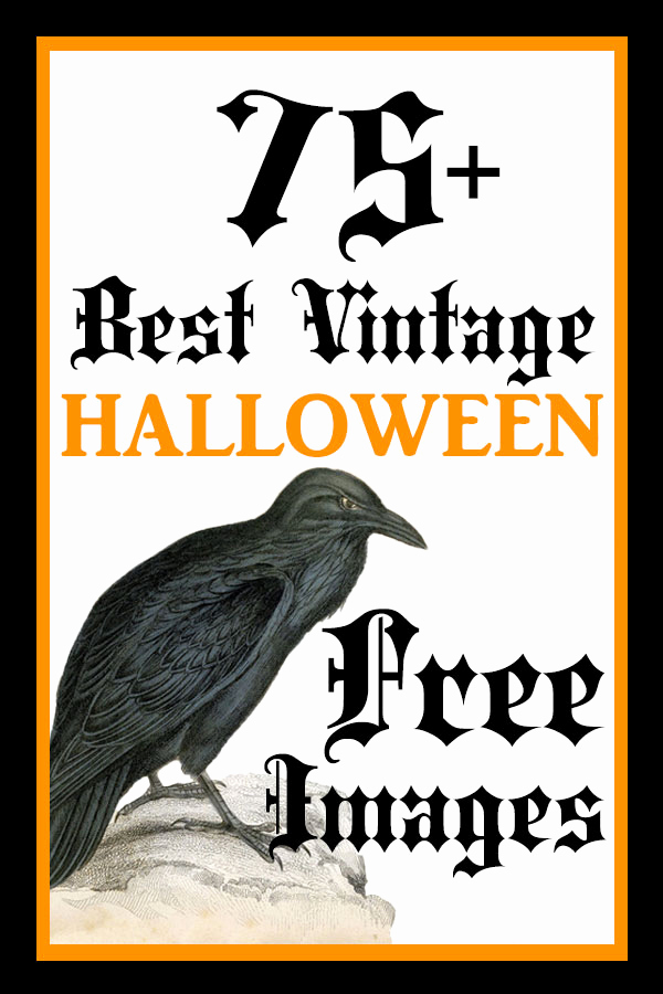 Best Free Clip Art Elegant 75 Best Free Vintage Halloween the Graphics Fairy