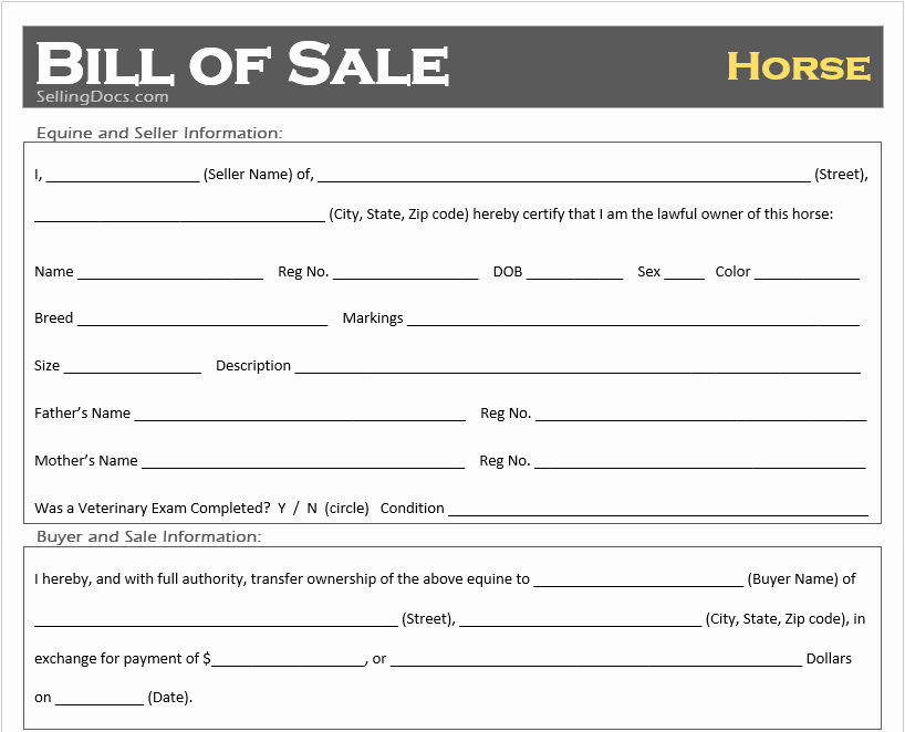 Bill Of Sale for Horse Awesome Free Printable Horse Bill Of Sale Template Selling Docs