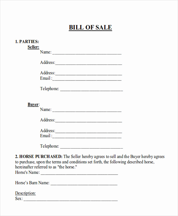 Bill Of Sale for Horse Beautiful 9 Horse Bill Of Sale Examples In Word Pdf