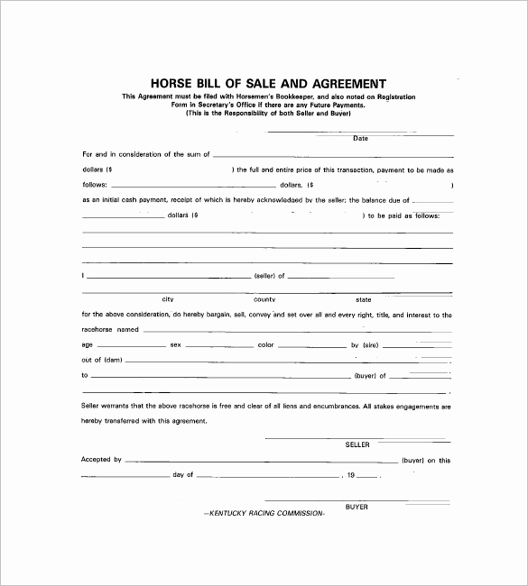Bill Of Sale for Horse Beautiful Horse Bill Of Sale – 8 Free Sample Example format