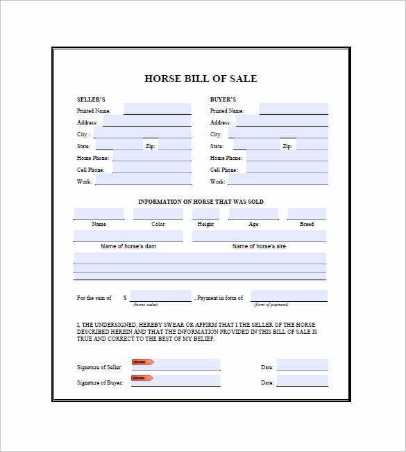 Bill Of Sale for Horse Elegant Horse Bill Of Sale 9 Free Word Excel Pdf format