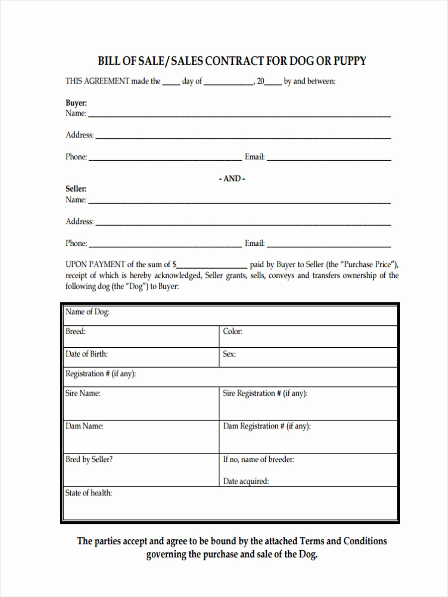 Bill Of Sale form Pdf New Dog Bill Of Sale form 5 Free Documents In Pdf