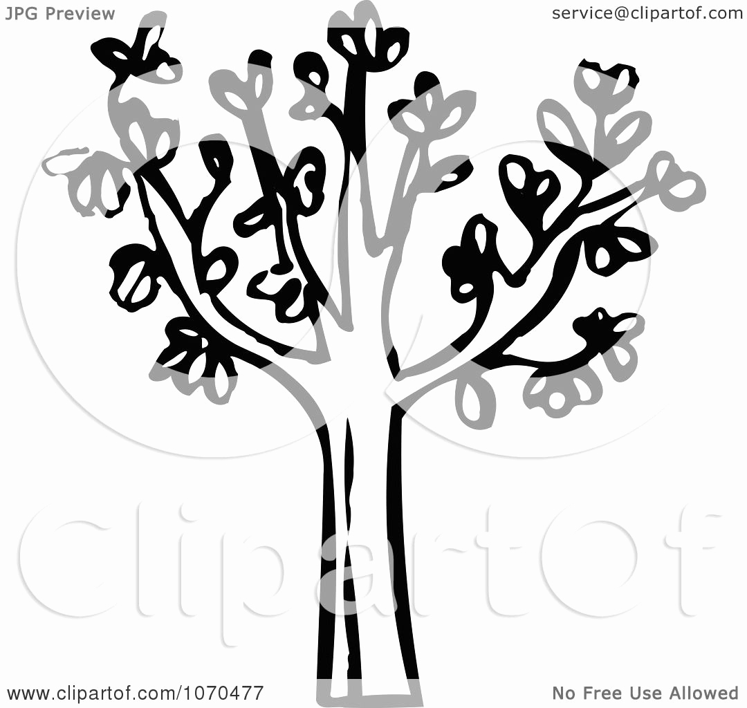 Black and White Illustration Elegant Clipart Black and White Tree Royalty Free Vector