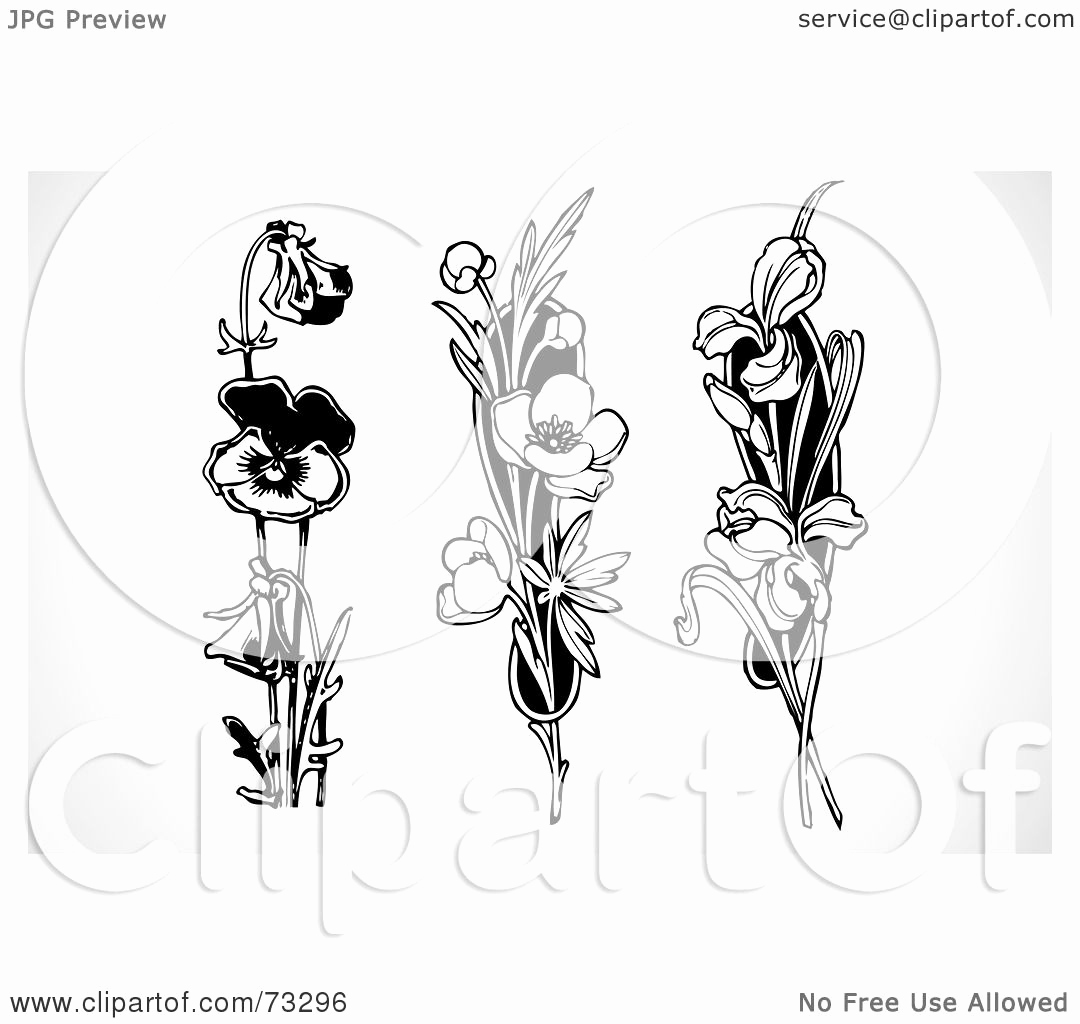 Black and White Illustration Inspirational Royalty Free Rf Clipart Illustration Of A Digital