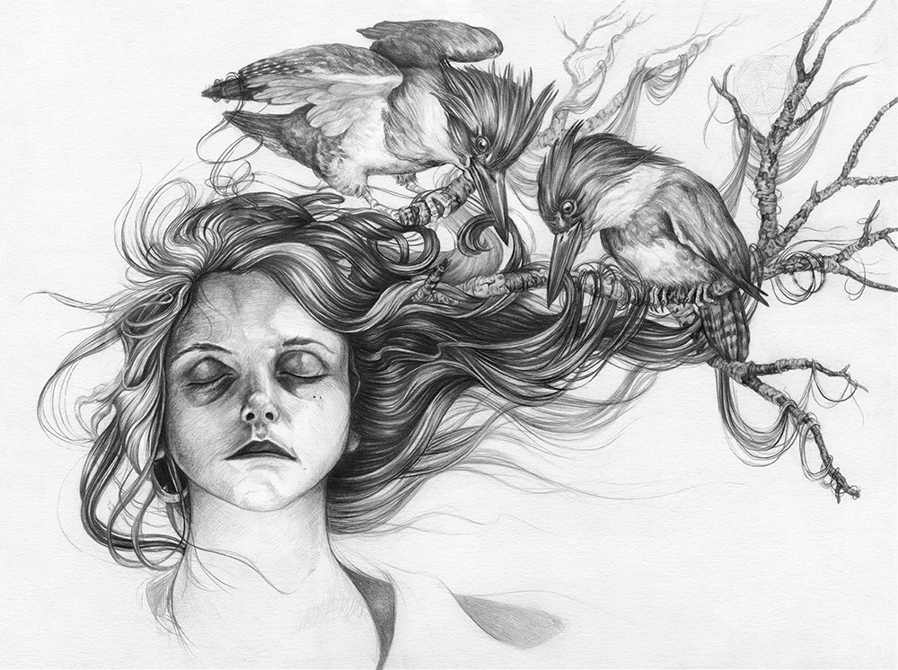 Black and White Illustrations Awesome Intricacies A Book Of Collaborative Drawings Inspired by