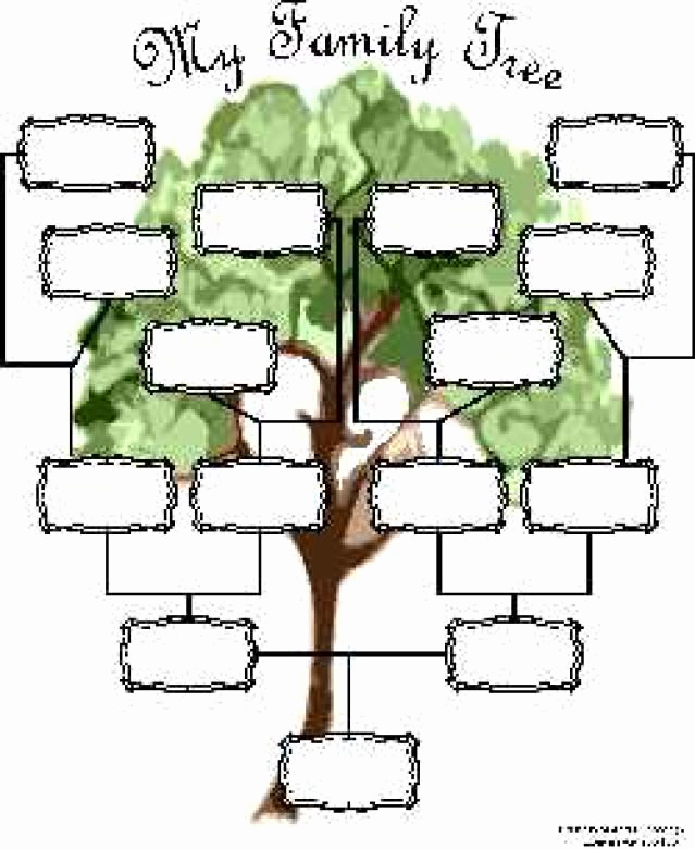 Blank Family Tree Chart Beautiful Free Family Tree Charts You Can Download now