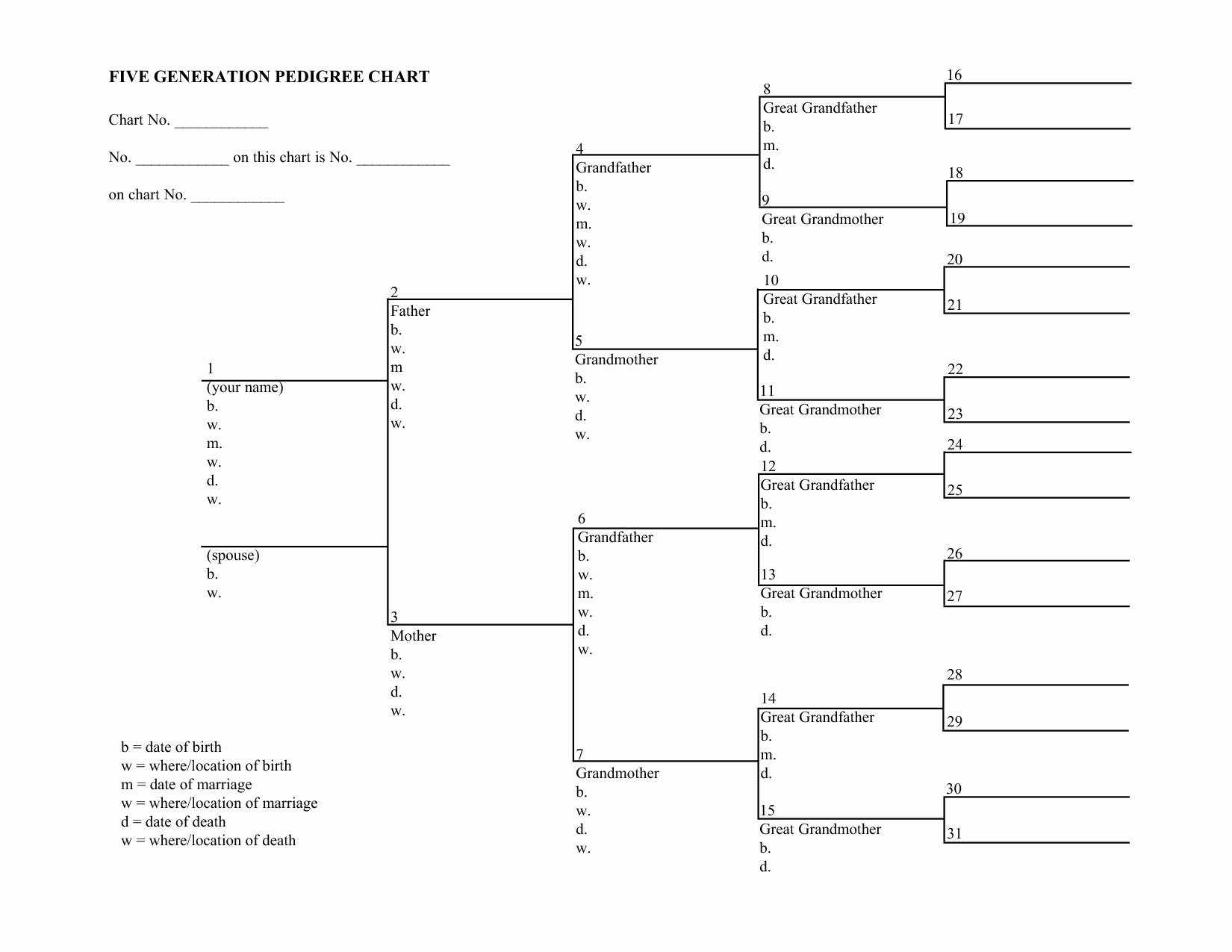 Blank Family Tree Chart Unique Blank Family Tree Charts
