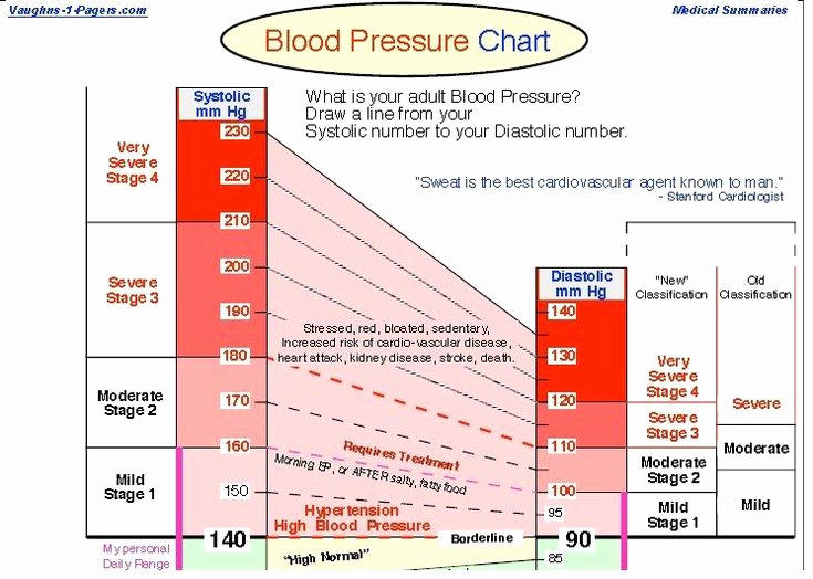 Blood Pressure Chart Pdf Awesome Best 25 Blood Pressure Chart Ideas On Pinterest