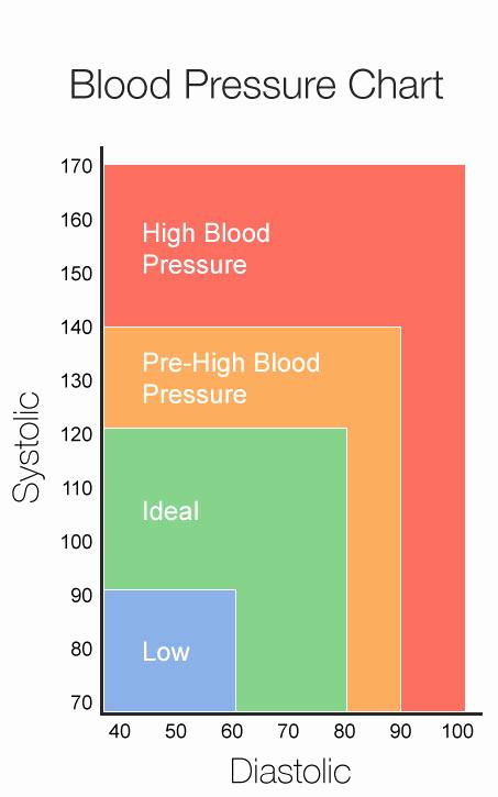 Blood Pressure Charts Pdf Fresh Testing Blood Pressure