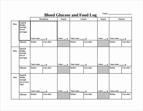 Blood Sugar Log Sheet Pdf Elegant Food Log Template 15 Download Free Documents In Pdf
