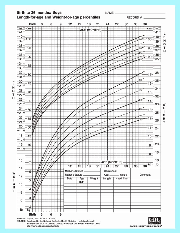 Boys Height Weight Chart Best Of Height and Weight Chart for Baby Boys From the Center for
