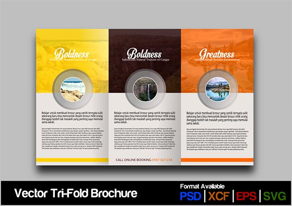 google brochure template