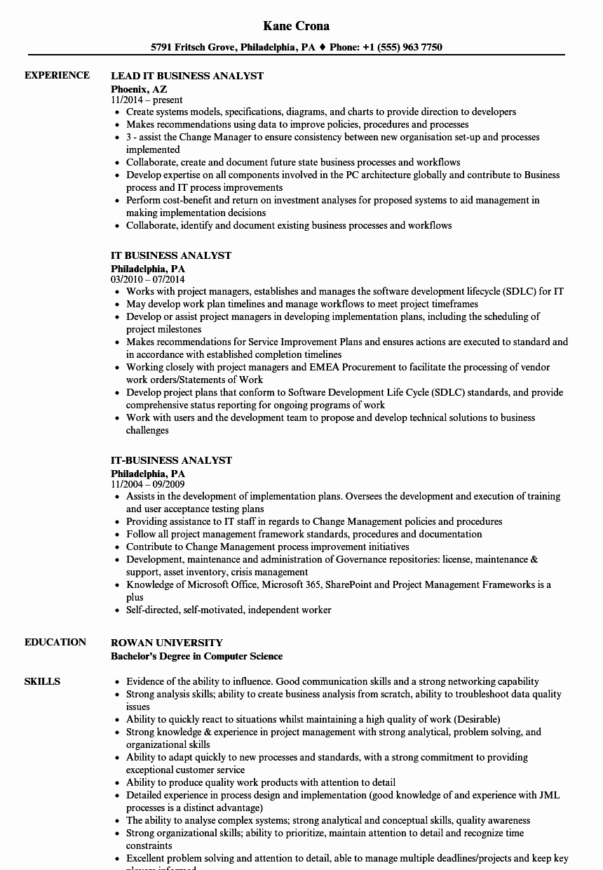 Business Analyst Resume Examples Lovely It Business Analyst Resume Samples