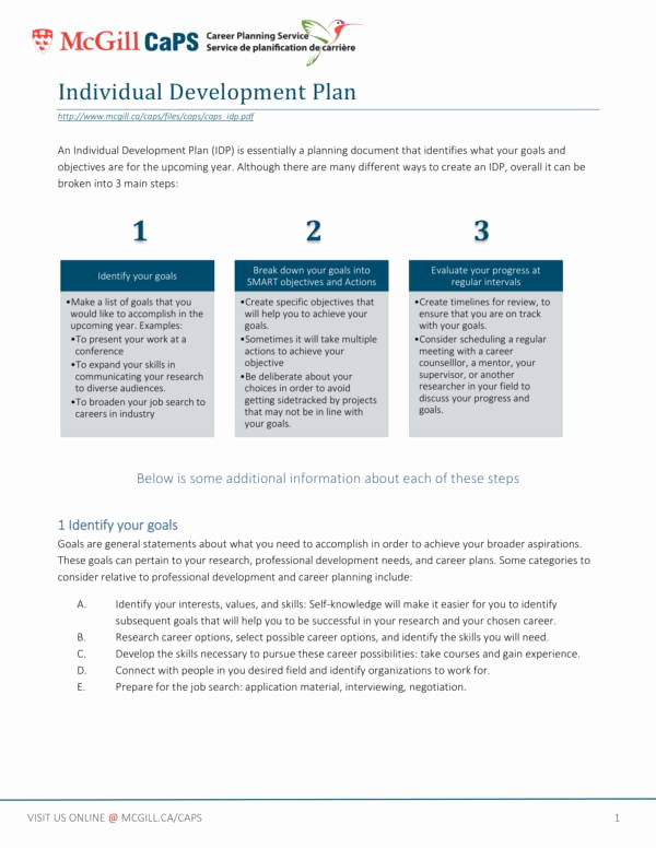 Business Development Plan Template Luxury 9 Personal Development Plan Template Pdf