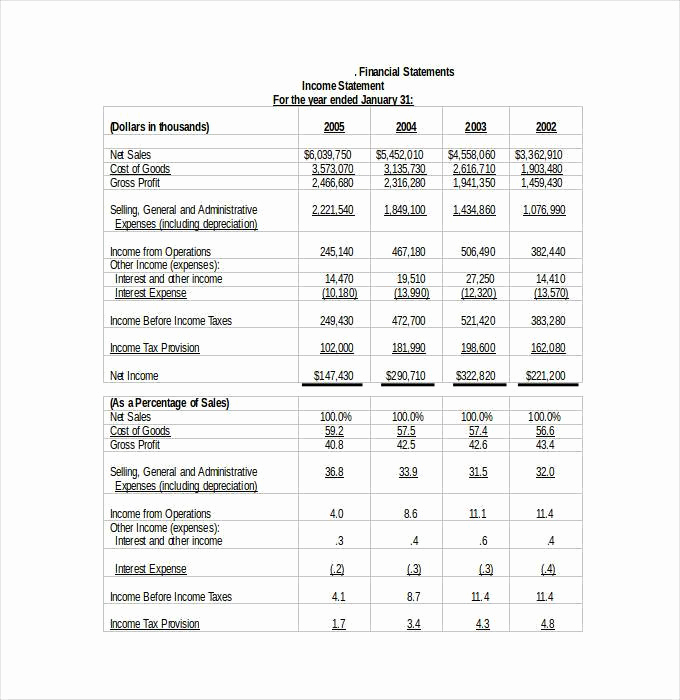 Business Financial Statement Template Lovely 30 Financial Statement Templates Pdf Doc